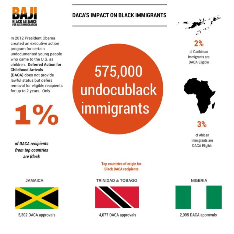 blackimmigrants-daca graphic
